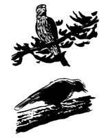 Bird samples by MRNeno