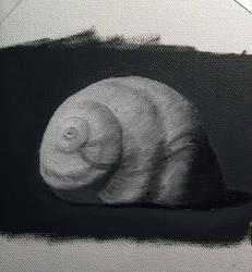 Adventures in Oil Paints: Monochromatic Shell by xxmihoxx
