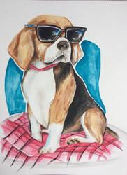 Beagle  by icerynn