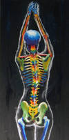 Skeleton by CByondU