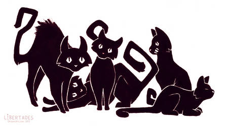 Cats by Libertades