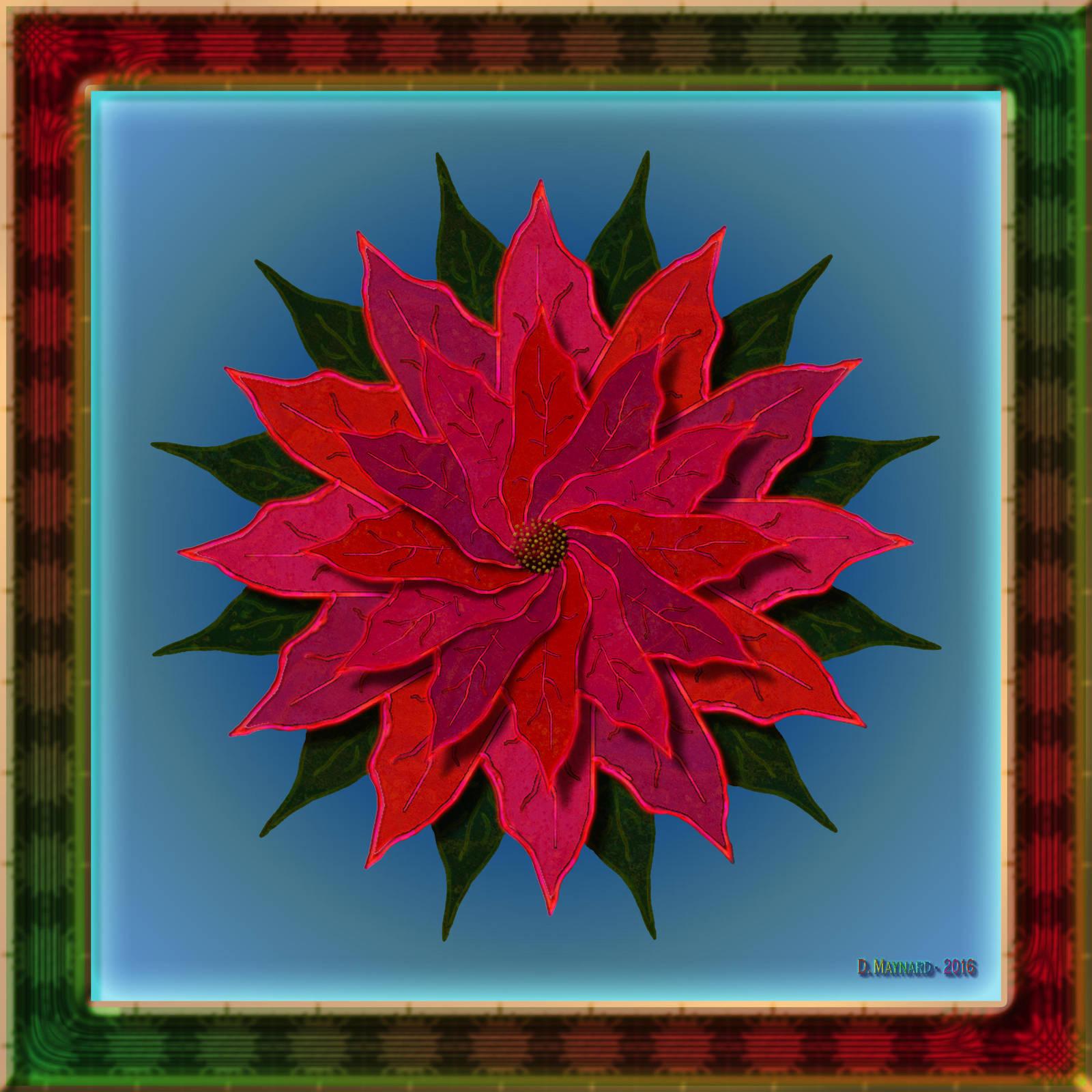 20161202-Poinsettia-P001-v9 by quasihedron