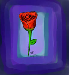 Rose by SamAP