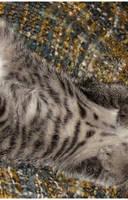 Little Maya by Aoxa-Cats