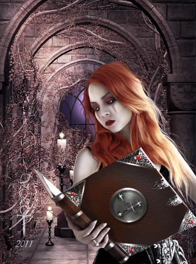Lilith's book by vampirekingdom