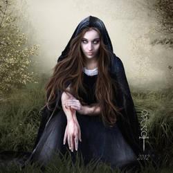 I offer my Kingdom by vampirekingdom
