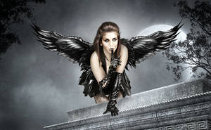 Dark Angel by vampirekingdom