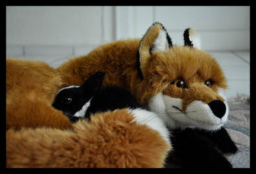 Fox and Rabbit by Skia