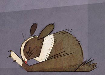 Rabbitlick by Skia