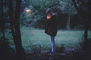 they go home at dusk by NikolasBrummer