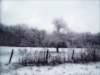 Hivernal by PoussiereObsidienne