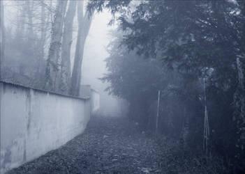 Chemin de Brume by PoussiereObsidienne