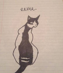 Eevee (drawing of my cat) by CakeIsHoly