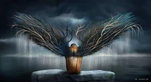 Dark Metamorphosis by Softyrider62
