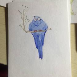 bird by tiemao