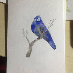 Bird2 by tiemao