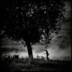 Far Away 3 by AlexandruCrisan