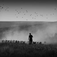 Far Away In My Dreamland by AlexandruCrisan