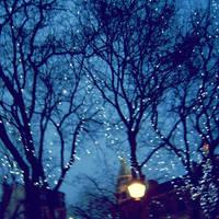 Goodnight, by TamarBurduli