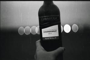 Le Vin by TamarBurduli
