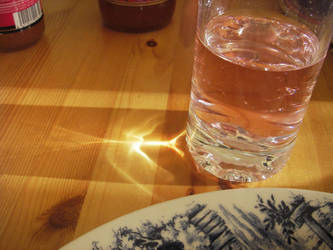 drinkware by lioncat
