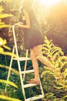 climb into sun by Holunder
