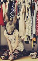 Donkeys Fashion by Holunder