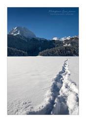 Zaledjeno Crno jezero III by godislove