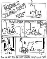 The Incredible Life of Colonel Floppy by timsplosion