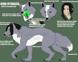 Kiba [Purchased Character] - Lilythekitsune by AnthroMan106