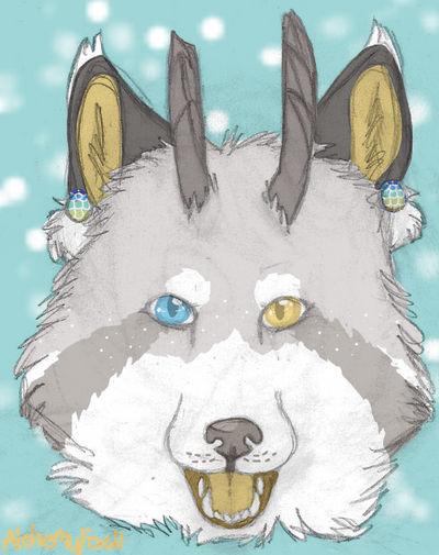 AlchemyFox's Profile Picture
