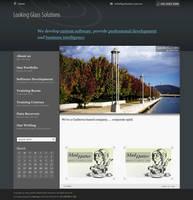 LGS website revamp by klepas