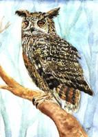 Eurasian Eagle Owl Watercolor by Blackwolfoffireworks
