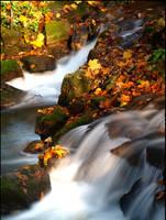 Waterfall at Fall by AgiVega