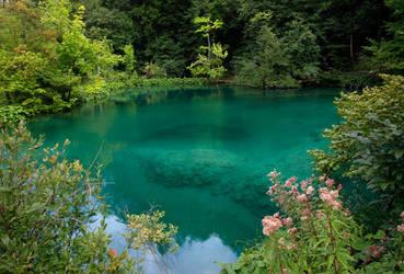 Plitvice - Turquoise Lake by AgiVega