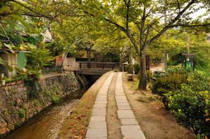 Kyoto Philosopher's Walk 2 by AndySerrano