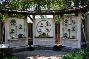 Bonsai Library by AndySerrano