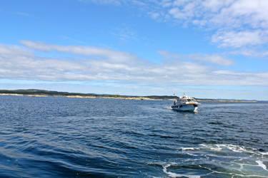boat by EliSsHka