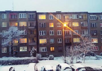 Winter beauty by Skydelan