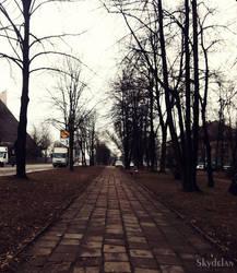 Avenue by Skydelan