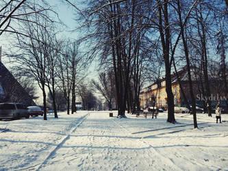 Winter by Skydelan