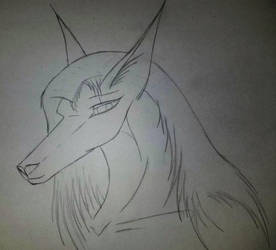Ava Sketch by Vercinacox