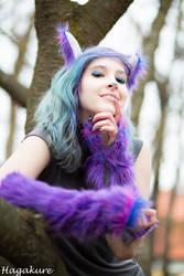 Cheshire Cat -Looking down on you by akinanajuma