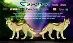 Essence Reference by Wolven-Sister