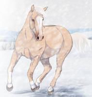 King of Winter by PaleMount