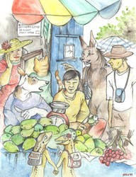 Il mercato by ienaserena