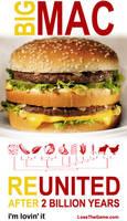 Big Mac Phylogeny by LoseTheGameDotCom