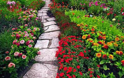Secret Garden by glamz