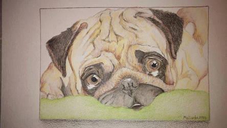 Puggles by Serialinkest