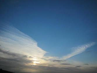 Sky Wings Flying by Golden-Penguin